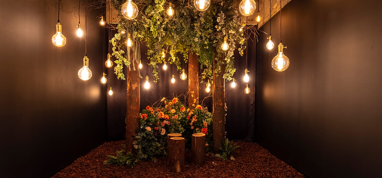 電球の部屋